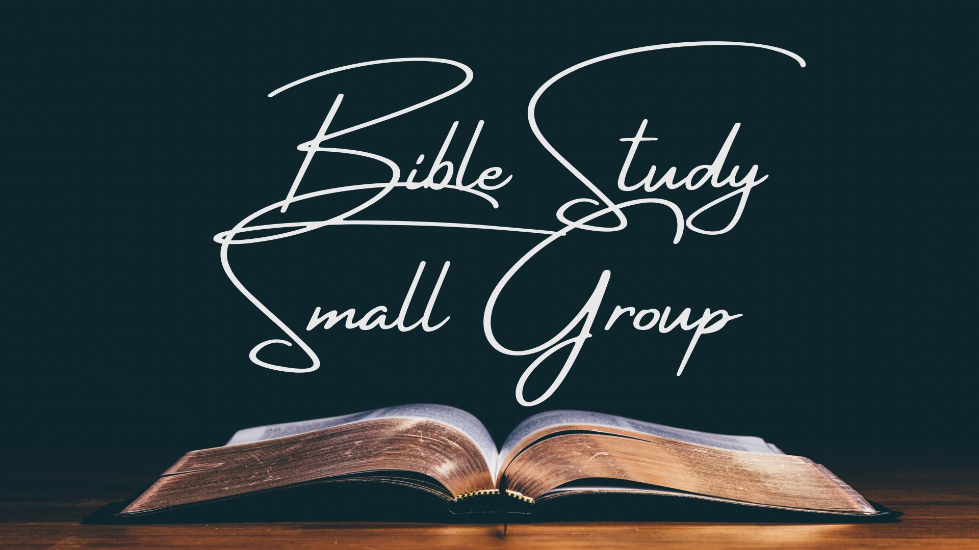 BibleStudy_Web
