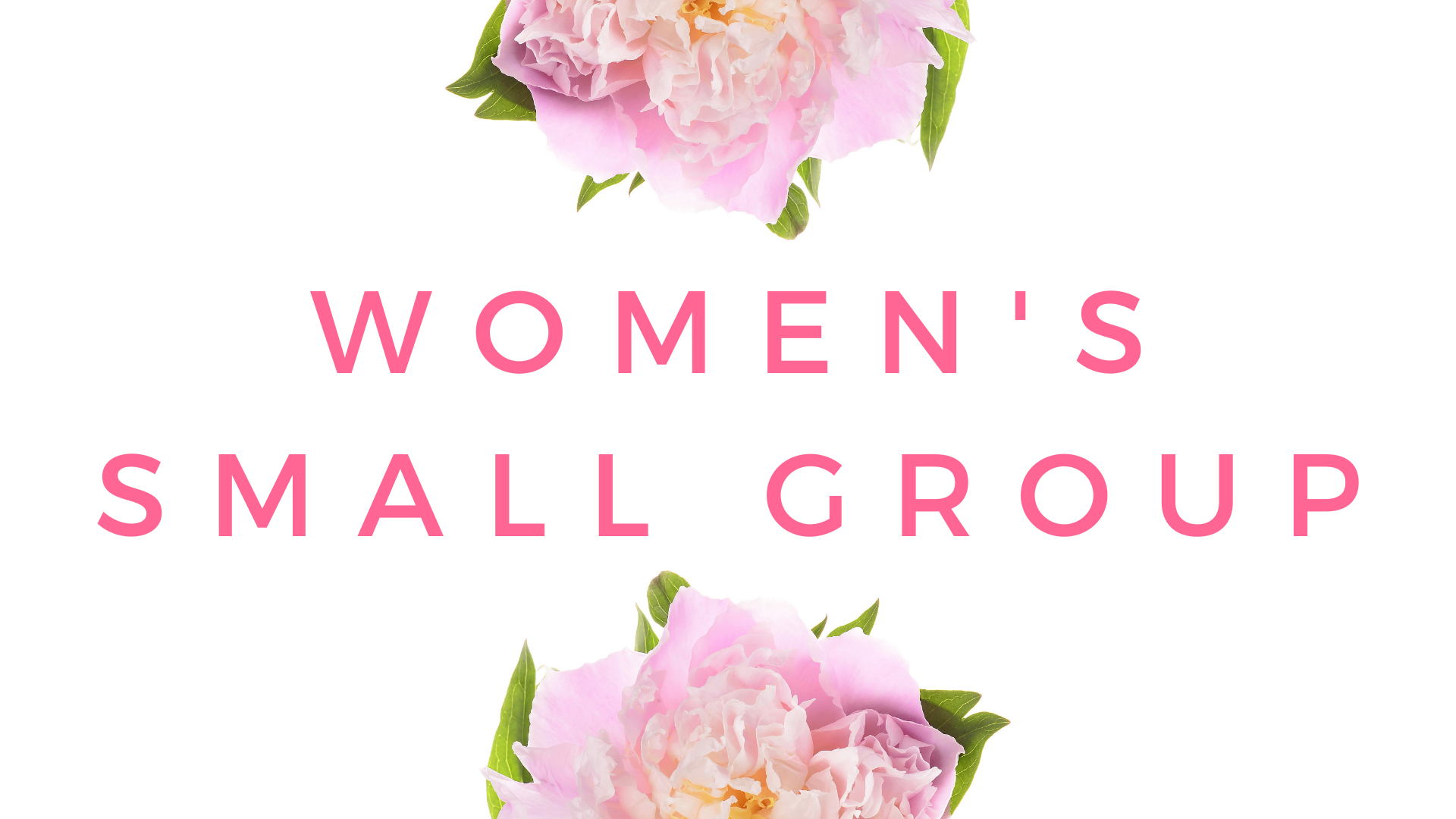 Women's Small Group_Web